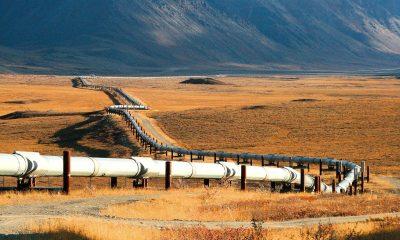خط أنابيب الغاز الجزائري