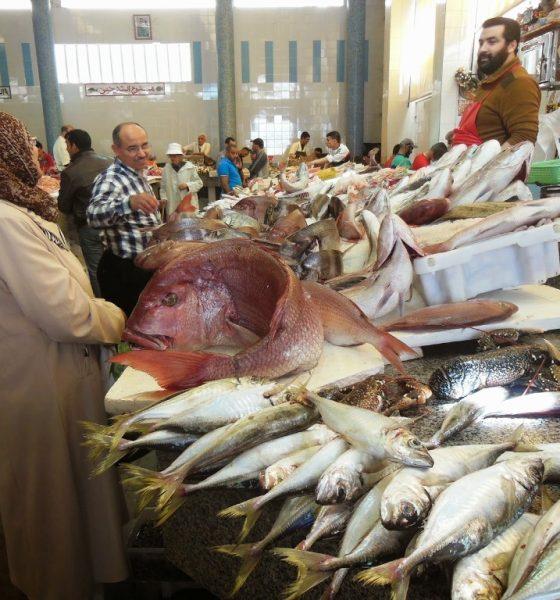 ارتفاع أسعار الفواكه والأسماك في شتنبر والدار البيضاء أغلى المدن