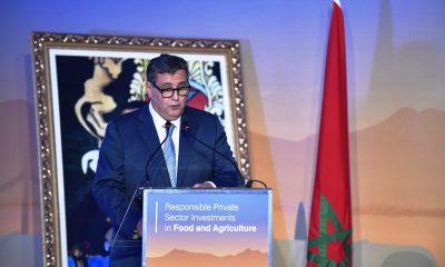 """البنك الأوربي والفاو يدعمان المرحلة الثانية من """"المغرب الأخضر"""""""
