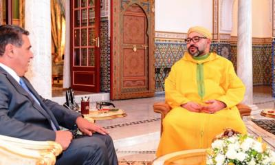 محمد السادس يكلف أخنوش ببلورة تصور جديد لقطاع الفلاحة