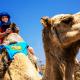 9,5 ملايين سائح زاروا المغرب وأداء جيد لمغاربة العالم