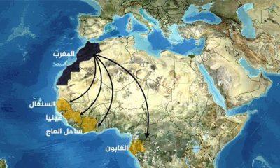 انخفاض استثمارات المغرب في إفريقيا جنوب الصحراء بنسبة 45 في المائة